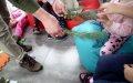 28-29.10.2019 Warsztaty przyrodnicze - Przedszkole Skrzat