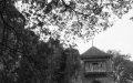 Zdjęcie -Zamek-w-Ojcowie-obecnie-fot.-Adam-Szafraniec