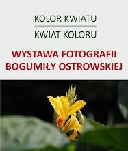 Wystawa fotografii Bogumiły Ostrowskiej